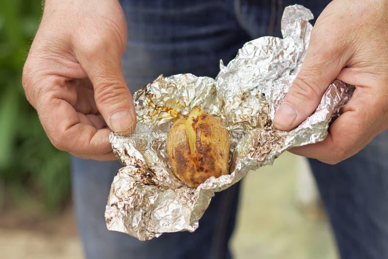 Batata preparada na folha nas mãos masculinas imagem de stock