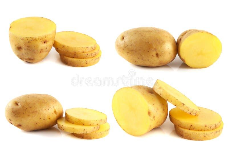 Batatas ajustadas isoladas no fundo branco. fotografia de stock