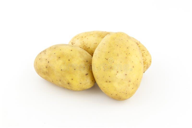 Batatas cruas no fundo branco fotos de stock
