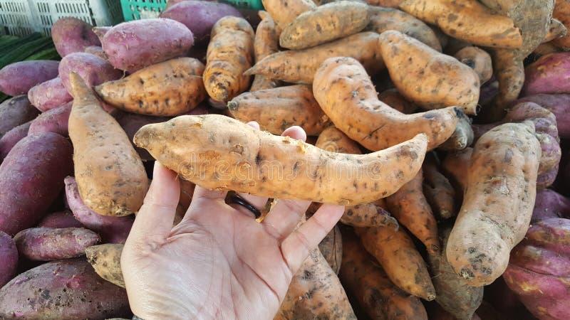Batatas doces no mercado fotografia de stock royalty free