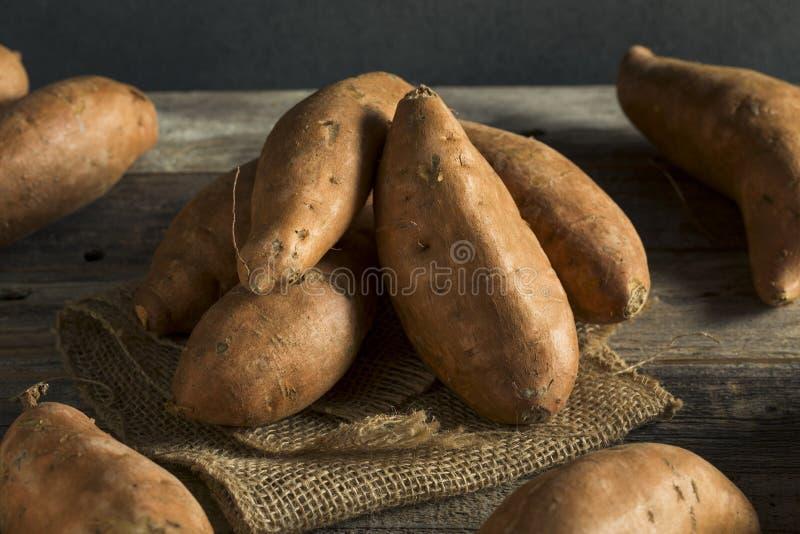 Batatas doces orgânicos alaranjados crus da batata doce imagens de stock