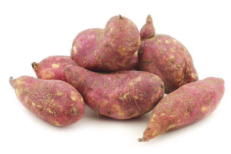 Batatas doces recentemente colhidas fotos de stock royalty free