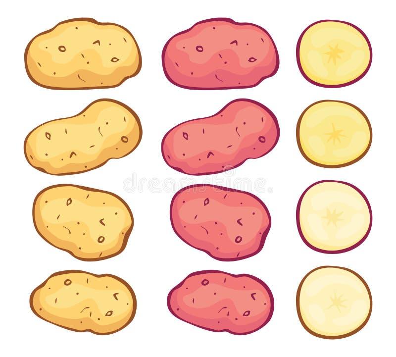 Batatas e cortes inteiros da batata ilustração royalty free