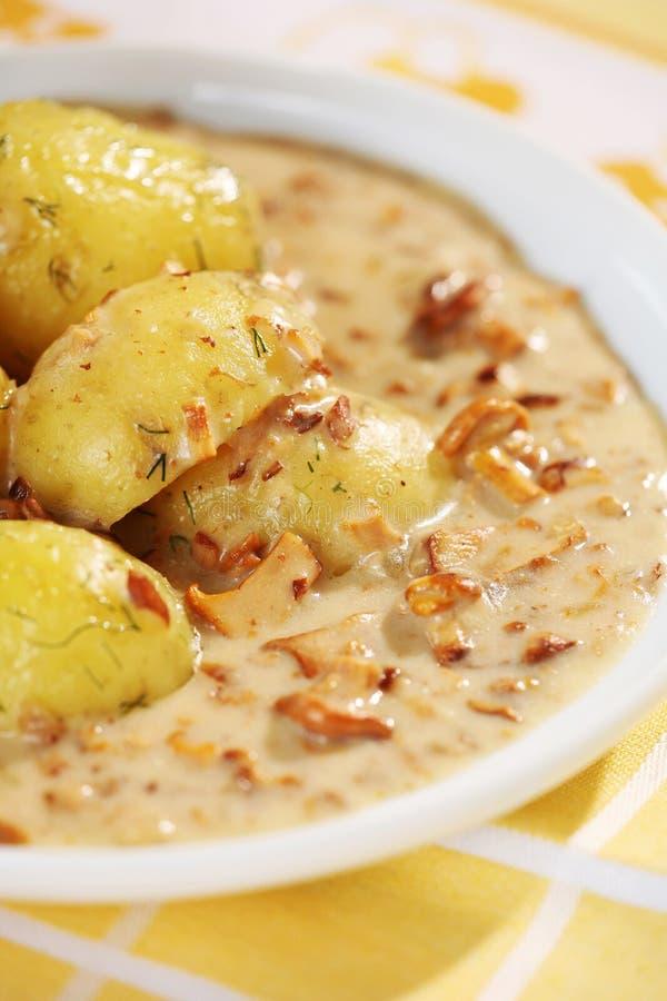 Batatas e molho fervidos das primas fotos de stock