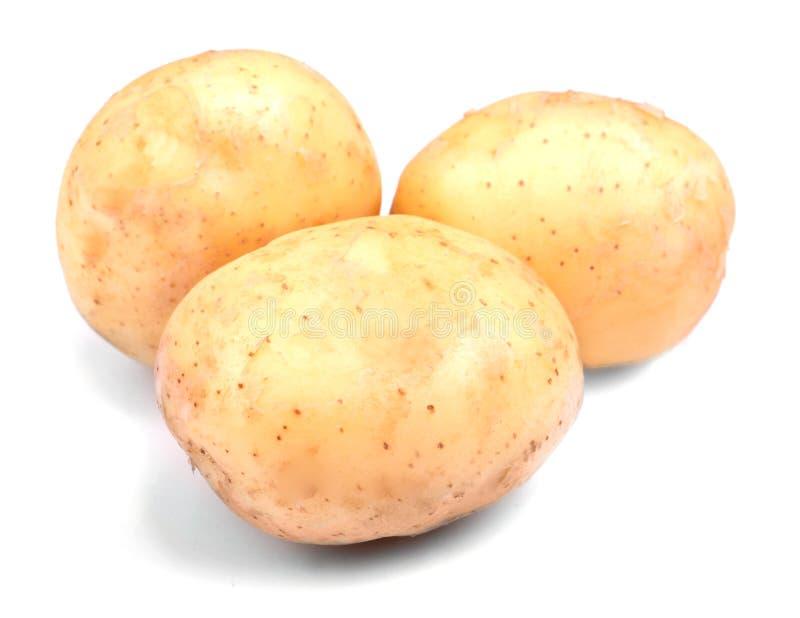 Batatas maduras, cruas, frescas e naturais do jardim verde, em um fundo branco Três inteiros, batatas limpas e orgânicas fotografia de stock royalty free