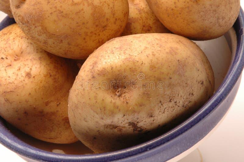 Batatas na bacia 3 horizontal fotografia de stock