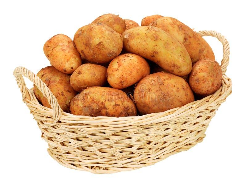 Batatas na cesta fotografia de stock