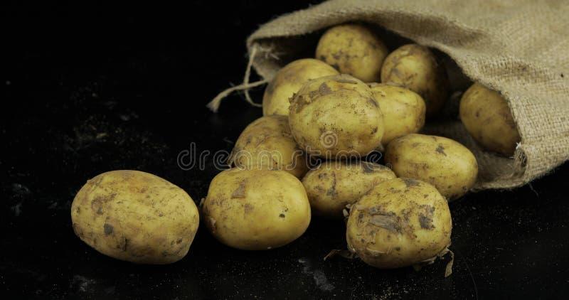 Batatas no surfase preto em um saco da lona Batata crua suja fresca em uma pilha imagens de stock