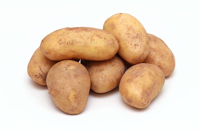 Batatas velhas fotografia de stock royalty free