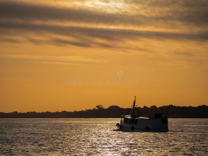 Bateau dans le fleuve Amazone photo libre de droits