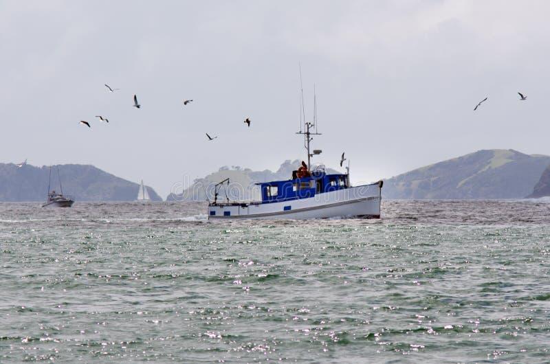 Bateau de pêche à la baie des îles Nouvelle-Zélande photographie stock libre de droits