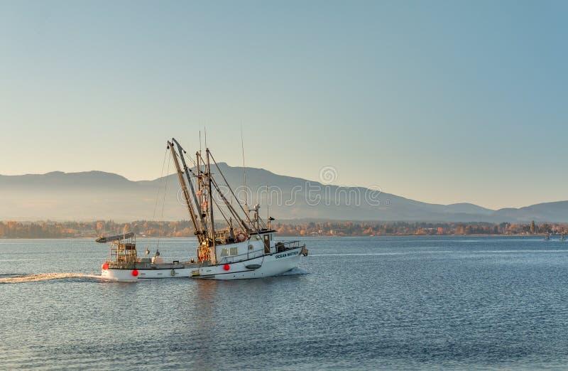 Bateau de pêche retournant du travail photographie stock