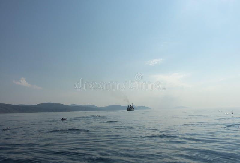 Bateau isolé en mer photo libre de droits