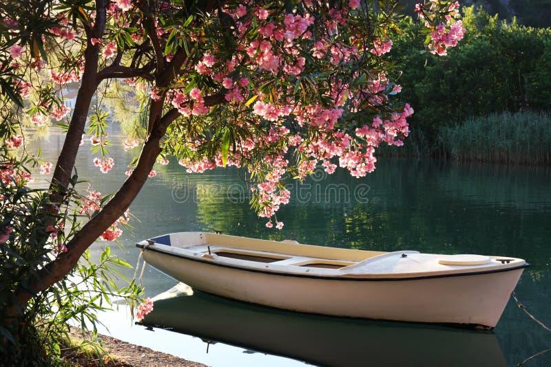 Bateau sur le fleuve photos libres de droits