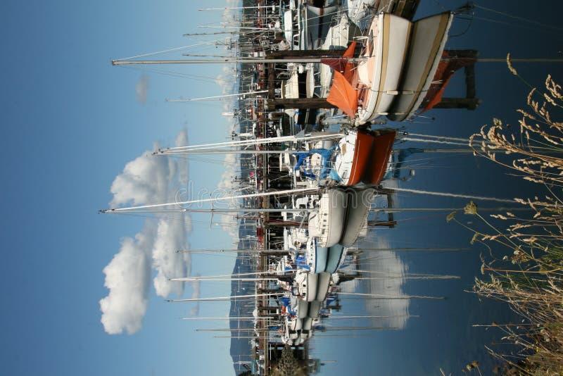 Bateaux à voiles au fleuve de Campbell photos stock