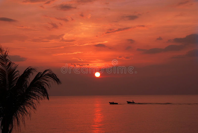 Bateaux dans le coucher du soleil photo libre de droits