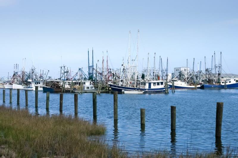 Bateaux de crevette de côte de Golfe dans le dock image stock