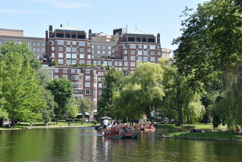 Bateaux de cygne au jardin public à Boston, le Massachusetts photo libre de droits