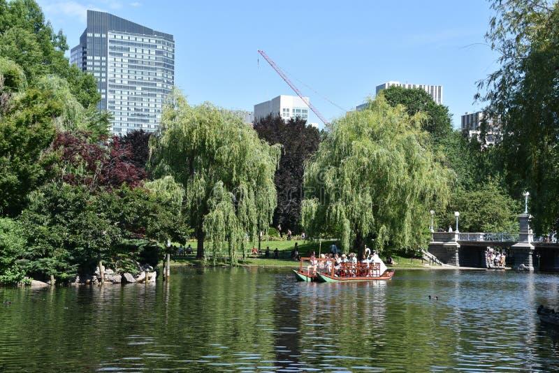 Bateaux de cygne au jardin public à Boston, le Massachusetts image stock