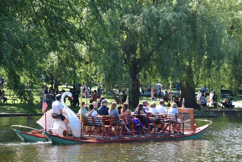 Bateaux de cygne au jardin public à Boston, le Massachusetts photos stock
