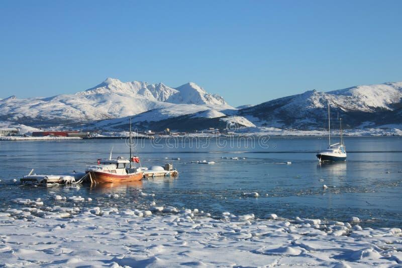 Bateaux de Lofoten flottant sur la glace images libres de droits