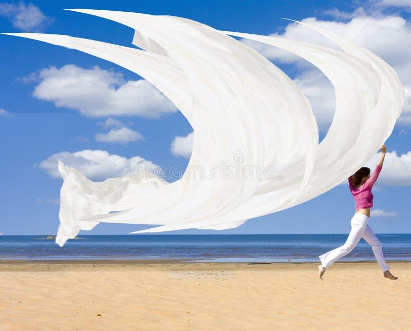 Bateaux de navigation à travers le ciel image libre de droits