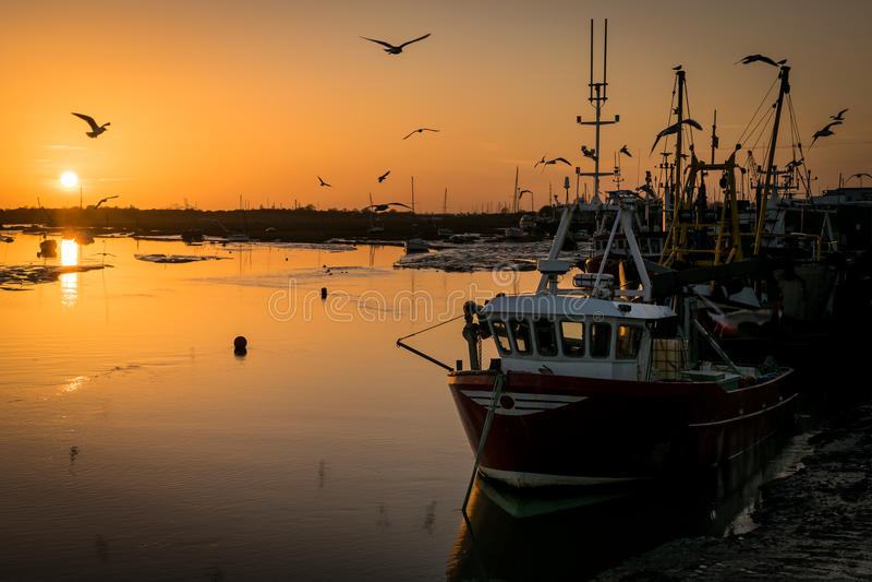 Bateaux de pêche au coucher du soleil photo libre de droits
