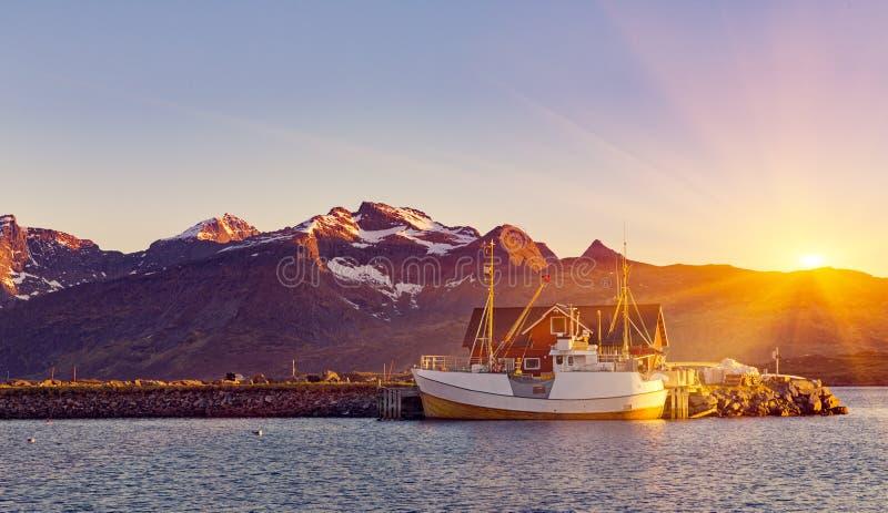 Bateaux de pêche dans le port au soleil de minuit en Norvège du nord, Lofo image libre de droits