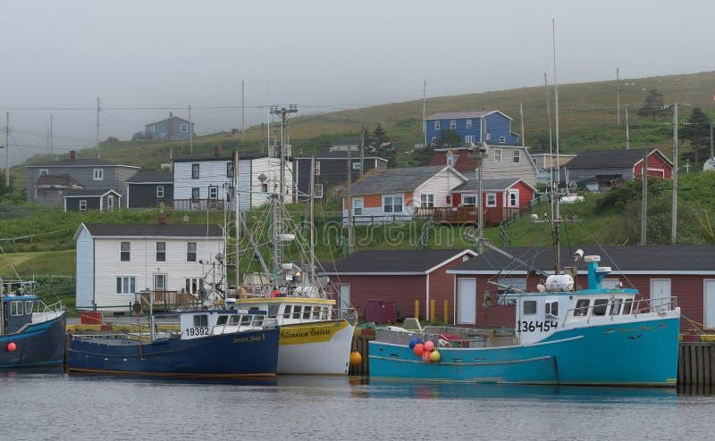 Bateaux de pêche dans le port de branche photo stock