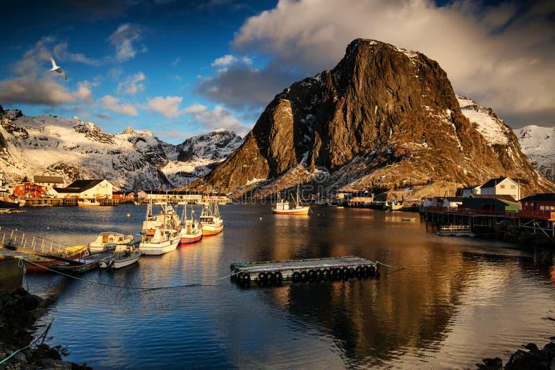 Bateaux de pêche dans le port Lofoten, Norvège photos stock