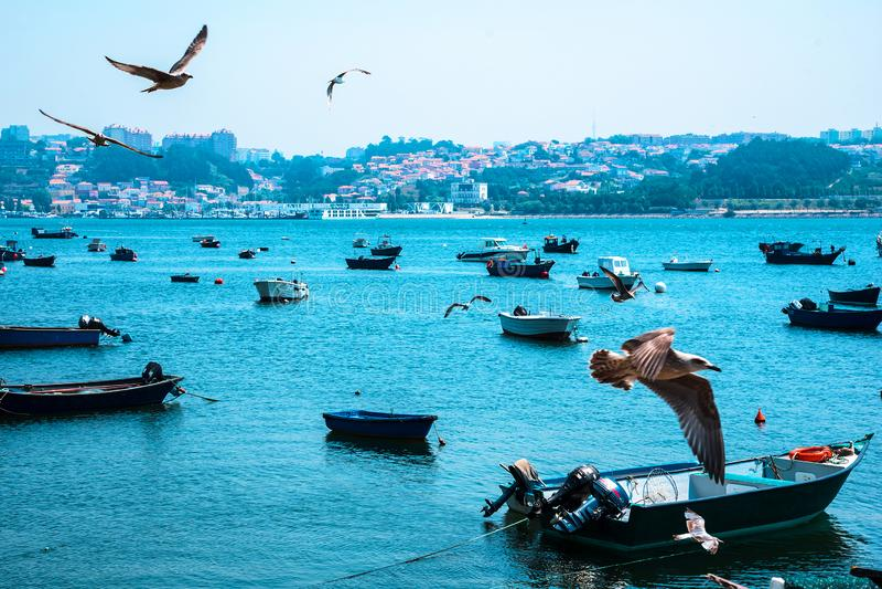 Bateaux de pêche sur la rivière de Douro porto portugal photos stock