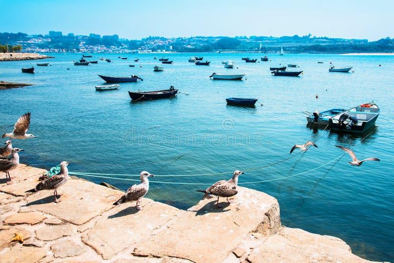Bateaux de pêche sur la rivière de Douro porto portugal image stock