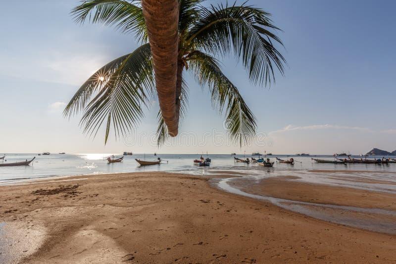 Bateaux de palmier et de taxi de plage de Sairee image libre de droits