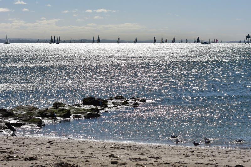 Bateaux de voile sur la mer argentée image stock