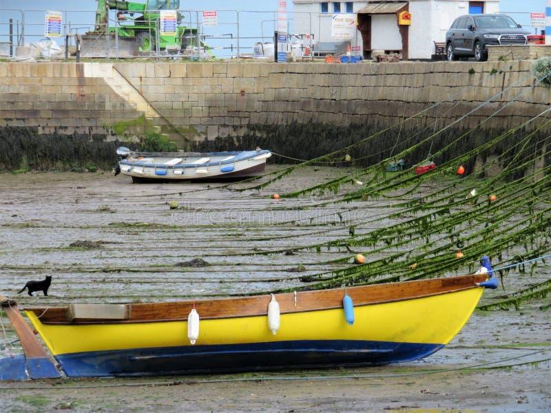Bateaux et un chat noir à marée basse dans le port de Bullock photos stock