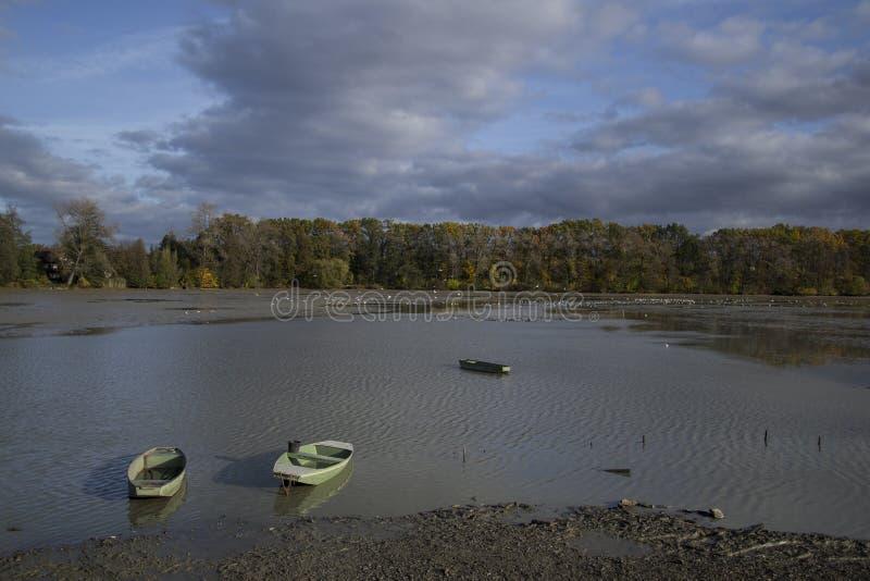 Bateaux sur l'étang vidangeant l'étang photo stock