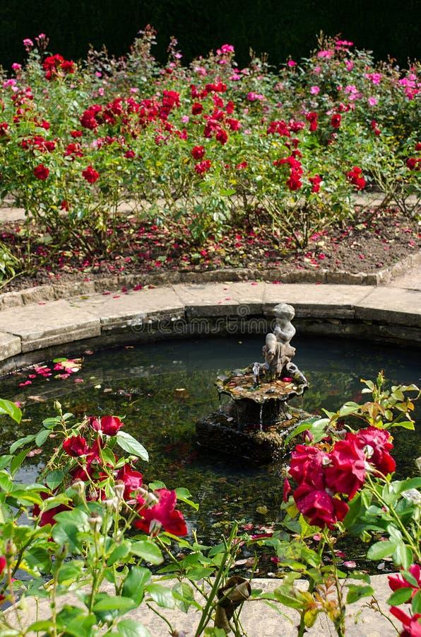 Batemans Rose Garden fotos de archivo