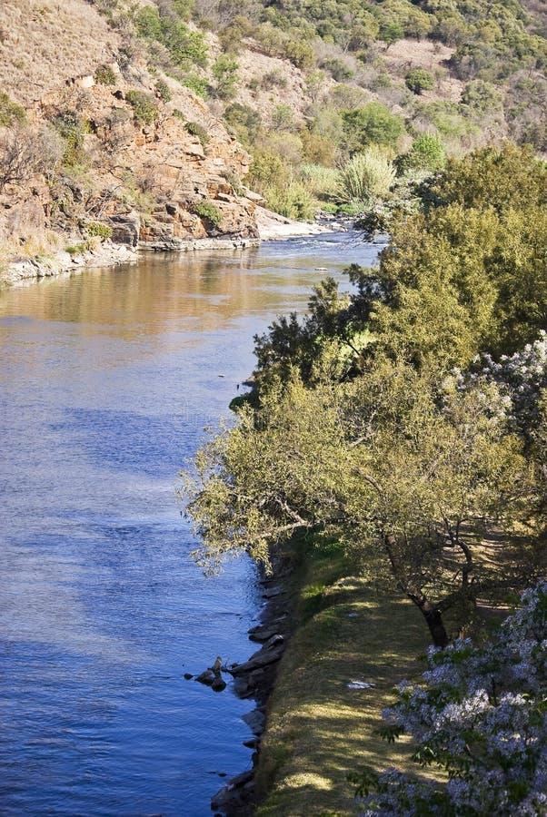 Batería de río - río de cocodrilo fotos de archivo libres de regalías
