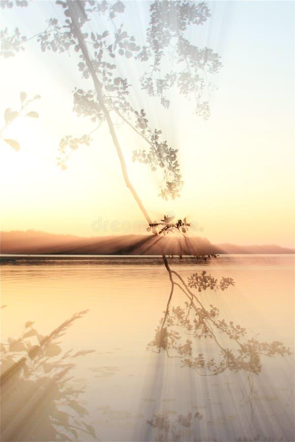 Batería del lago fotografía de archivo