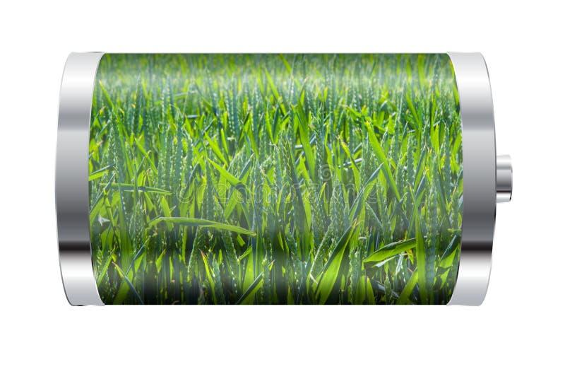 Bateria de campo do trigo ilustração do vetor