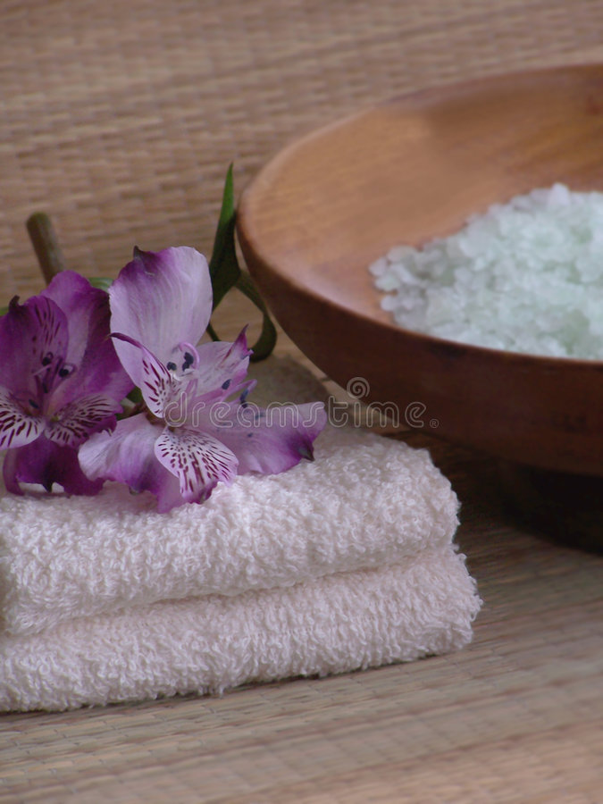 Free Bath Products. Stock Images - 480324