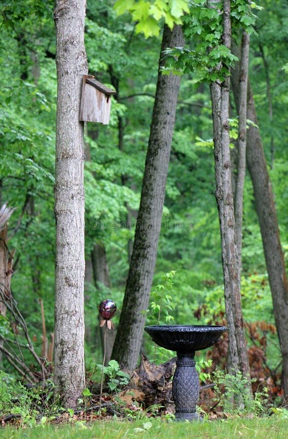 Bath rustique d'oiseau de jardin images libres de droits