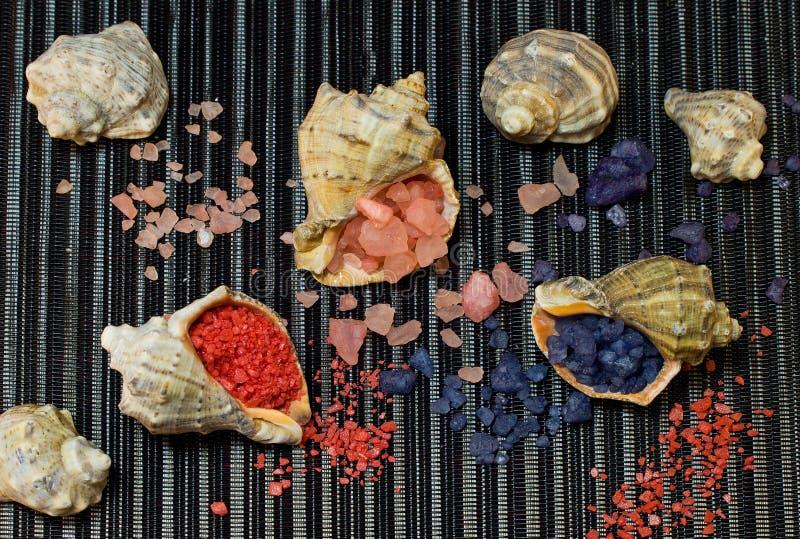 Bath salt in shells stock images