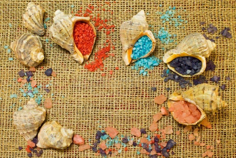 Bath salt in shells stock photography