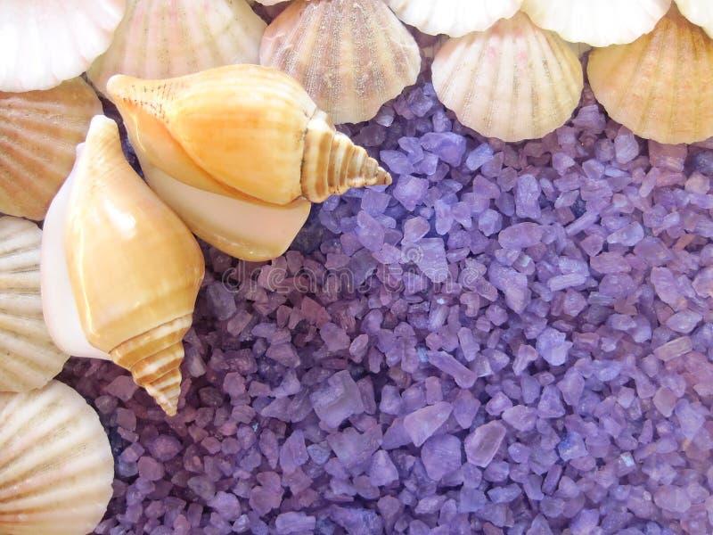 Bath salt and shells stock photography