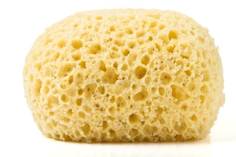 Bath sponge royalty free stock image
