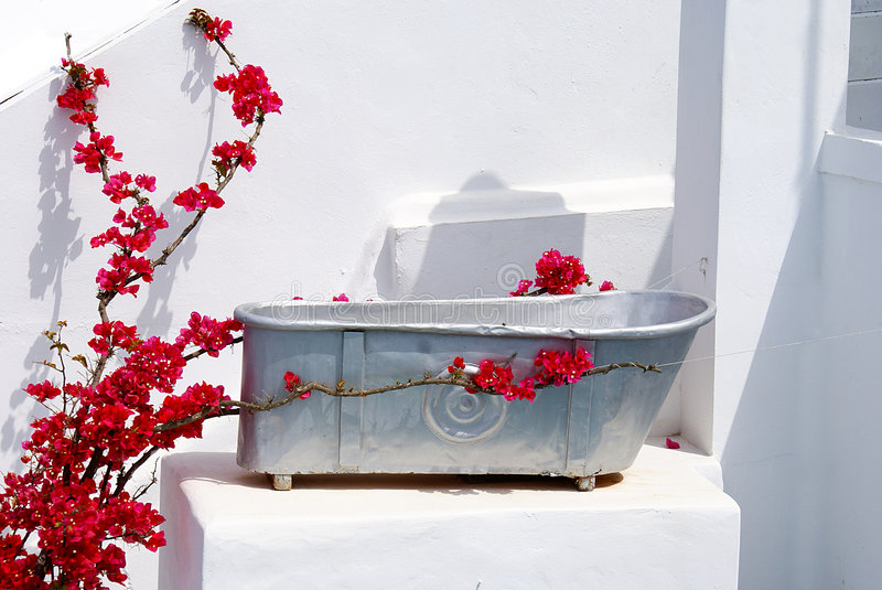 Bath-time. With red boukavilia under the sun, Greece royalty free stock images