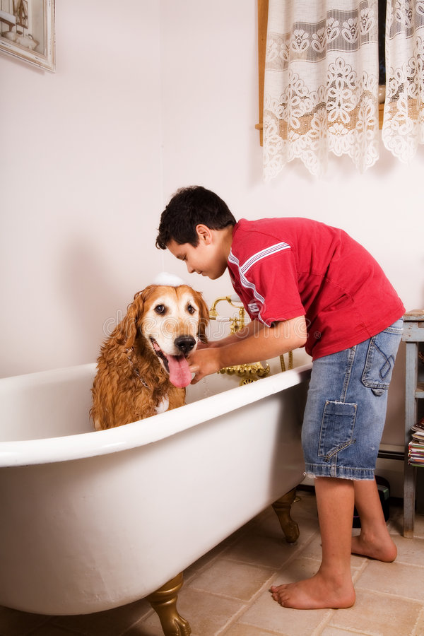 Bath Time royalty free stock image