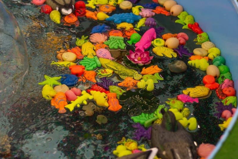 Bath  toys swimming water kid  fun. Bath water toys swimming  kid  fun colorful floating royalty free stock photography