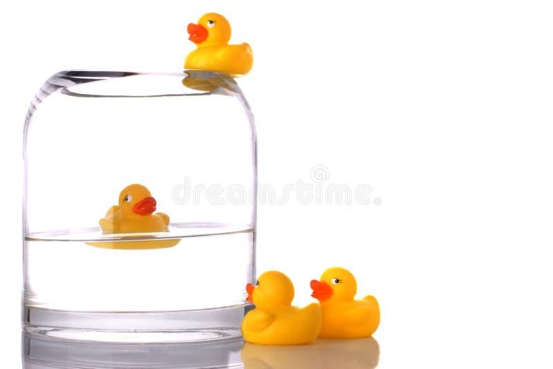 Bathing stock photos